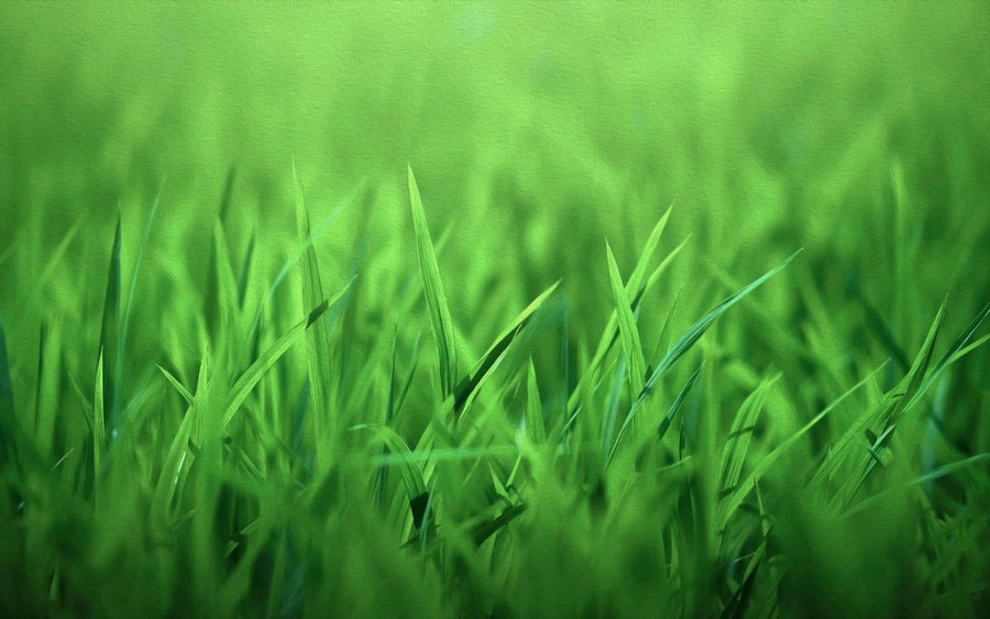 green_grass_oil_paint_wallpaper_by_pakaworld-d5sbs9e
